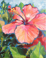 pink hibiscus flower painting